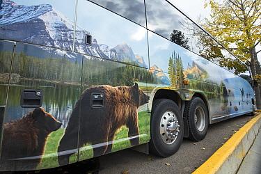 Touring bus showing wildlife branding on side, Jasper National Park, Alberta, Canada, June