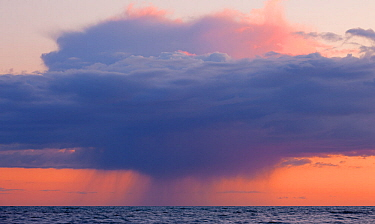 Heavy rainclouds at sunset over the English Channel, viewed from the Dorset Coast. April 2012.