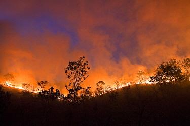 Fire blazing in Chapada dos Veadeiros National Park, Cerrado region, Goias, Brazil. Fires at the peak of the dry season, September.
