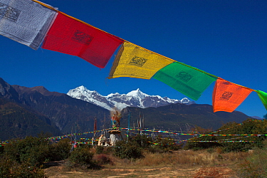 Lung ta prayer flags, Mount Kawakarpo, Meili Snow Mountain National Park, Yunnan Province, China. October 2009