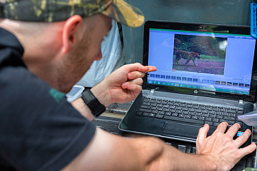 Eric Ash of Freeland Foundation examining camera trap images showing Indochinese tiger (Panthera tigris corbetti), Dong Phayayen-Khao Yai Forest Complex, eastern Thailand, August, 2014.