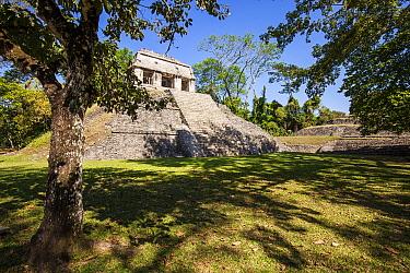 El Conde pyramid, Palenque Mayan ruins, Chiapas, Mexico, March 2017.