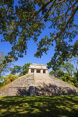 El Conde pyramid, Palenque Mayan ruins, Pre-Hispanic City and National Park of Palenque UNESCO World Heritage Site, Chiapas, Mexico, March 2017.