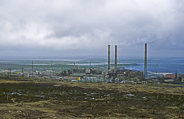Norilsk, a large industrial town above the Arctic Circle,  produces Nickle, Palladium, Copper, Cobalt etc and is the largest stationary source of  air pollution  in Russia. Gases including sulfur diox...