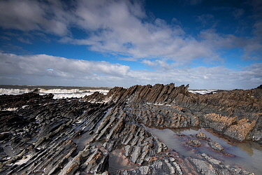 Steeply dipping beds of Silurian age turbidite sediments, Clarach Bay, Aberystwyth, Wales, UK, September 2014.