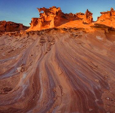 Eroded salt laden sandstone 'fins' in incredible sculpted forms comprise an area know as 'Little Finland.' Gold Butte National Monument, Nevada, USA. President Barack Obama designated the monument on...