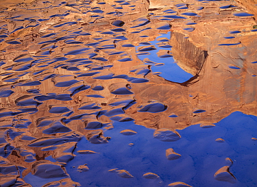 Stevens Arch reflected in the amid sand bar ripples Escalante Canyon, Canyon National Recreation Area, Utah, USA