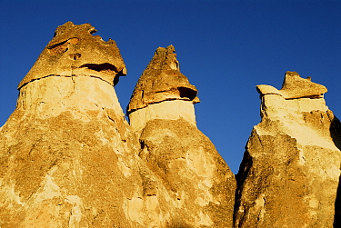 Pinnacles, also known as fairy chimneys or hoodoo,  Love Valley. Goreme National Park and the Rock Sites of Cappadocia UNESCO World Heritage Site. Turkey. December 2006.