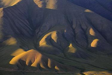 Upland plateau in Inner Tien-Shan region, Western Tien-Shan UNESCO Natural World Heritage Site, Kyrgyzstan Republic, June 2016