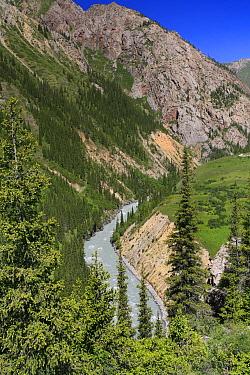 Malyi Naryn canyon river in Inner Tien-Shan Mountains region, Western Tien-Shan UNESCO Natural World Heritage Site, Kyrgyzstan Republic, June 2016