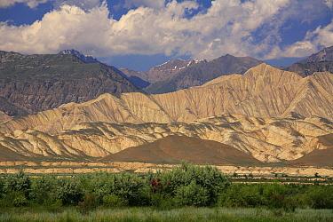 Naryn River Valley, Inner Tien-Shan region, Western Tien-Shan UNESCO Natural World Heritage Site, Kyrgyzstan Republic, June 2016.