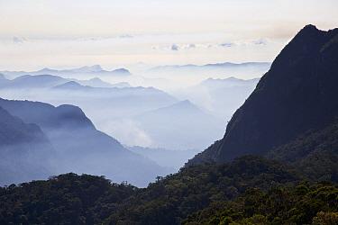 Landscape of Rainforests of the Atsinanana UNESCO World Heritage Site, Madagascar, December 2015.