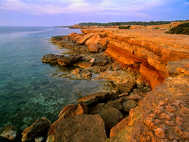 Rocky coast in Ses Platges des Compte,  Ibiza biodiversity and culture UNESCO World Heritage Site, Spain.