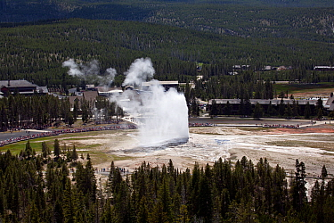 Old Faithful Geyser in the Upper Geyser Basin of Yellowstone National Park, Wyoming, USA, June 2013.