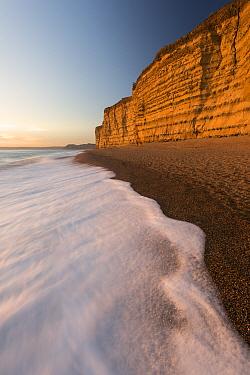 Foam on beach below cliffs at Burton Bradstock, late evening light, Dorset, UK. November 2016.