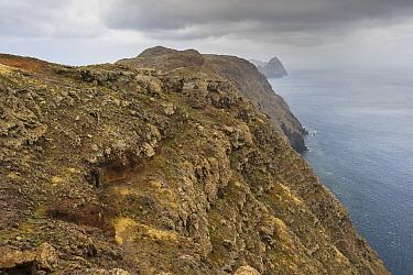 Deserta Grande, Madeira, Portugal, 2013.