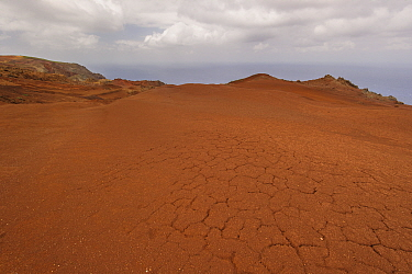 Arid landscape of Deserta Grande, usual habitat of  Deserta Grande wolf spider (Hogna ingens), Madeira, Portugal. 2013.