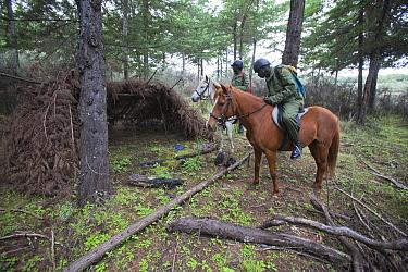 Wildlife poaching patrol unit on horseback investigate a poacher's den Mount Kenya National Park, Kenya