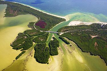 Aerial shot of the Laguna Sian Ka'an, freshwater lagoon, just before entering the sea, close to Boca Paila, Quintana Roo, Yucatan Peninsula, Mexico. February 2014. Photographed for The Freshwater Proj...