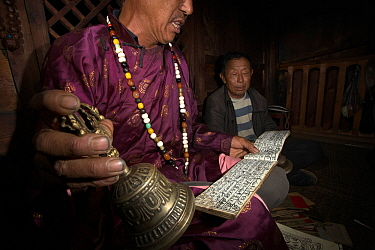 Nakhi shaman performing ceremony and reading from Dongba / Naxi pictographs, Yunnan, China, July 2010.