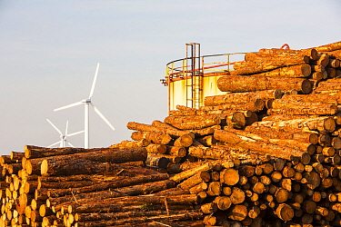 Logs bound for a biofuel power station in Workington next to oil tanks in Workington port, Cumbria, UK, with a wind farm in the background.