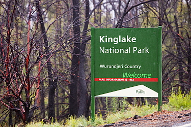 Kinglake National Park sign by burnt forest near Kinglake, one of the communities worst affected by the catastrophic 2009 Australian bush fires in the state of Victoria in which 173 people were killed...