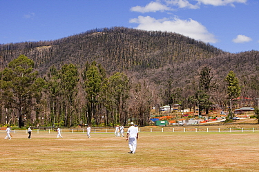Memorial cricket match between Kinglake and Marysville on anniversary of  catastrophic bush fire in which 173 people were killed. Victoria, Australia, February 2010.