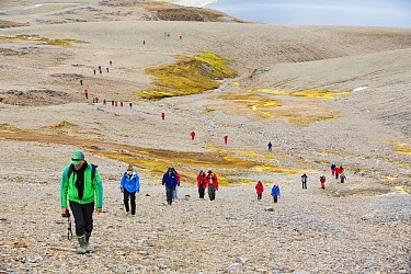 Passengers on an expedition cruise to Antarctica following part of Shakleton's famous walk across South Georgia. The group are walking from Fortuna Bay to Stromness. South Georgia, Antarctica. Februar...