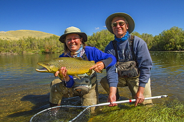 Man and woman  with prize 6lb male hook jawed Brown trout (Salmo trutta)  Beaverhead River, Montana, USA.