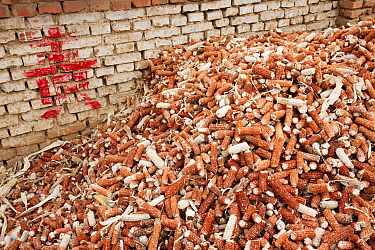 Maize husks that are used as a renewable fuel to burn on household stoves, northern China, March 2009.