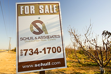 Sign from farmer trying to sell up his land that can no longer grow crops due to the drought. In the background are dying Almond trees that no longer have water to irrigate them. Near Bakersfield, Cal...