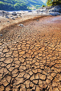 Mud cracks at Thirlmere reservoir in the Lake District during severe drought, England, UK. July.