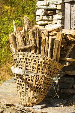 Firewood in basket, Annapurna, Himalayas. Nepal, December 2012.