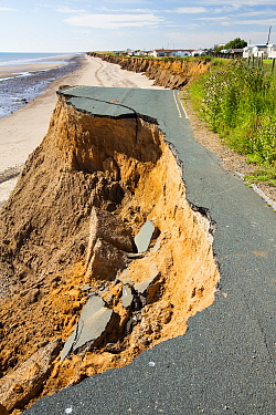 Collapsed coastal road between Skipsea and Ulrome, Yorkshire, England, UK. August 2013.