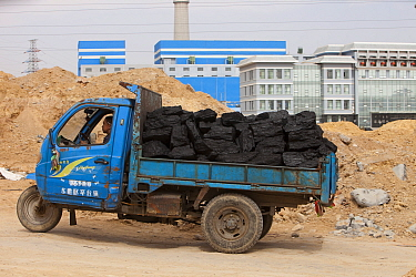 Lorries hauling coal to a coal fired power plant, Dongsheng, Inner Mongolia, China. March 2009. In 2008 China officially became the worlds largest emitter of greenhouse gases.