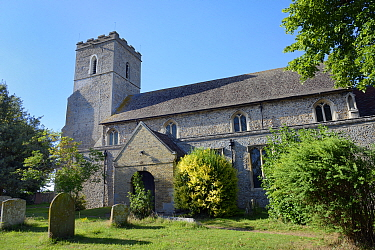 All Saints Church which has over 40 swift nestboxes in the belfry and a thriving colony of breeding Common swifts (Apus apus), Worlington, Suffolk, UK, July.