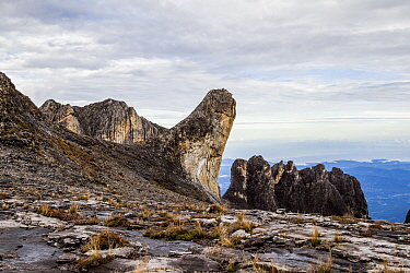 Oyayubi Iwu Peak 'the thumb' (3975.8 m) and the pinnacles. Mount Kinabalu, Borneo. May 2013.