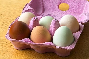 Bos of free range eggs of varying colour  from chickens of different breeds.