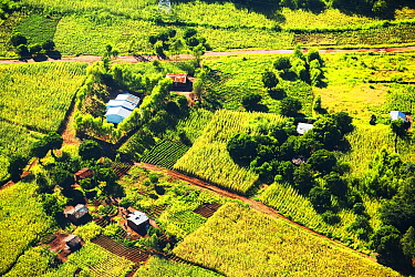 Aerial view of deforested forest slopes replaced by farmland for subsistence agriculture in Malawi. March 2015.