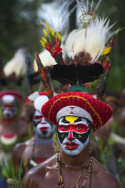 Member of Sing-sing group from Tambul, Western Highlands at Mount Hagen Show, Papua New Guinea, August 2011