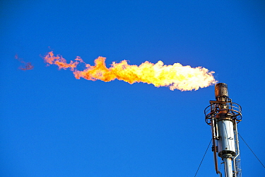 Flaring off gas at the Flotta oil terminal on the Island of Flotta in the Orkney's Scotland, UK.  October 2011.