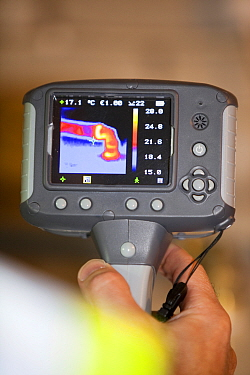 Thermal imaging camera showing heat loss from a hot water pipe.