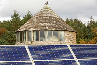 Green house powered by wind and solar power n remote off grid community. Scoraig, Scotland, October 2013.