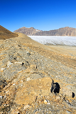 Glacier at Recherchefjorden on Western Svalbard with moraine showing the massive rate of retreat in the last 100 years. Svalbard, Norway, July 2013.