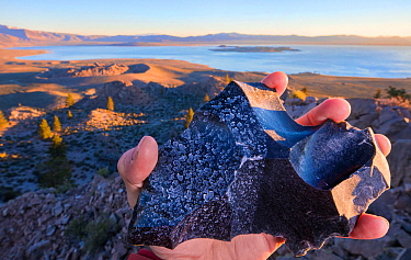 Piece of obsidian,  sprayed with water from the Pacific ocean (right)  and  with high mineral content water from Mono Lake (left) . Mono lake is three times saltier than the Pacific Ocean, and highly...