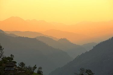 Misty light over the Modi Khola valley below the Annapurna Sanctuary, Himalayas, Nepal. December 2012.
