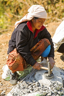 A Nepalese woman crushing stone with a hammer, Himalayan foothills, Nepal. January 2013.