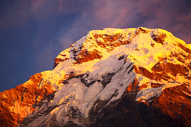 Alpenglow at sunrise on Annapurna South, Nepelese Himalayas.