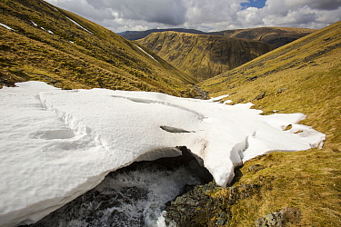 Raise Beck above Dunmail Raise, with large snow drift, Lake District, England, UK, April.