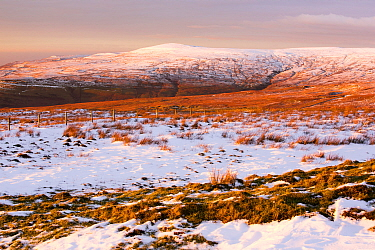Looking towards Black Fell in the North Pennines, from Hartside, Cumbria, UK. January 2016.